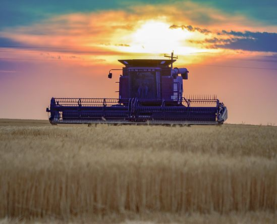 tractor at sunset in the harvest